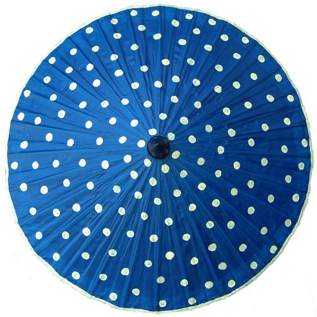 82cm blue - cream spot - waxed cotton